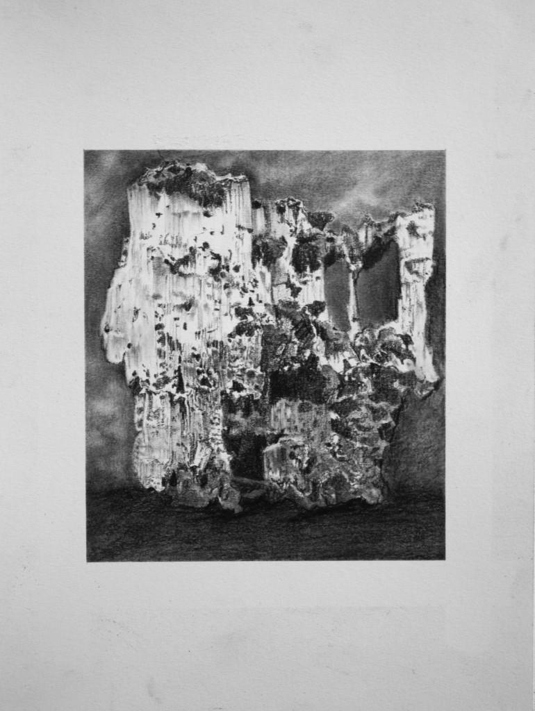Relic III 2009  Conte on Paper  30 x 27cm